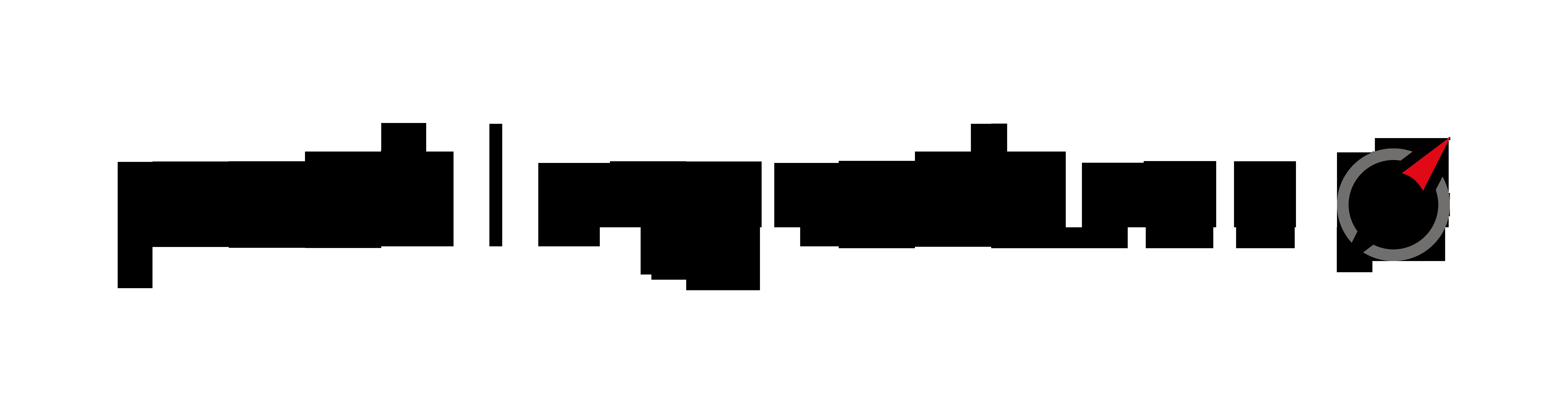Logo profilingvalues Diagnostik